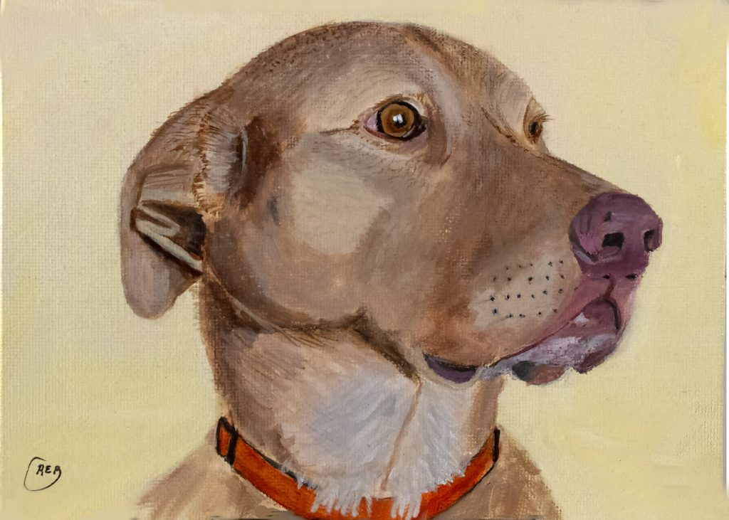painting og a dog jax